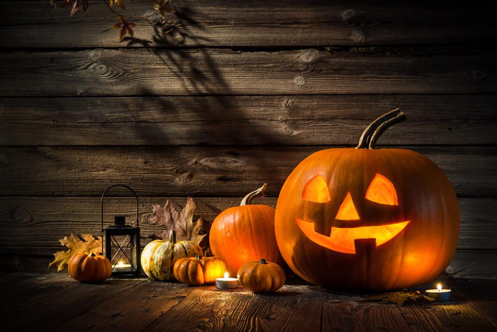 Halloween pamplona